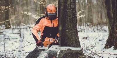 Landwirtschaftskammer Rheinland Pfalz Forstwirtschaft Willkommen